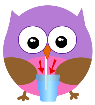 sip and spin owl taking a drink